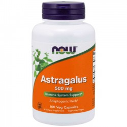 Astragalus 500mg (100 cápsulas) - Now Foods