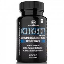Cardarine (60 caps) - R2 Research Labs