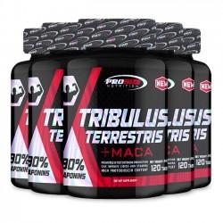 Combo 5 unidades: Tribulus Terrestris (120 tabs) - Pro Size Nutrition