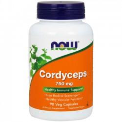 Cordyceps 750mg (90 cápsulas) - Now Foods