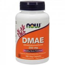 DMAE 250mg (100 cápsulas) - Now Foods