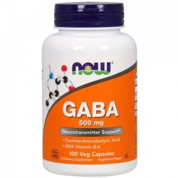 Gaba 500mg (90 cápsulas) - Now Foods