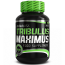 Tribulus Maximus 1500mg – 90 Cápsulas - BioTechUSA
